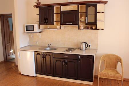 Квартира студио с отдельной спальней и балконом - Skhidnytsya - Rumah