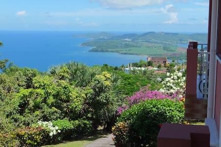 Villa Rose de Porcelaine, vue imprenable - La Trinité