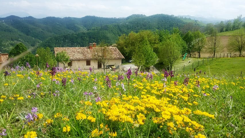 Lovely apartment in the Sibillini National Park