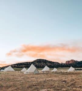 Wander Camp Yellowstone Tent #5