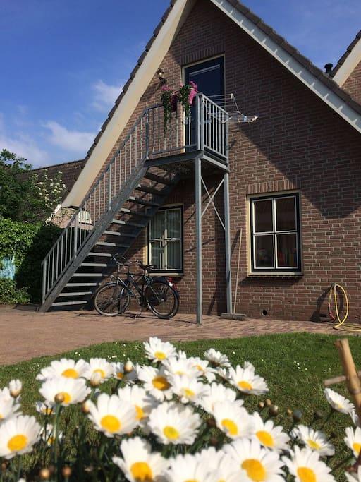 Van de fietsen kunt u gratis gebruik maken tijdens u verblijf bij ons!