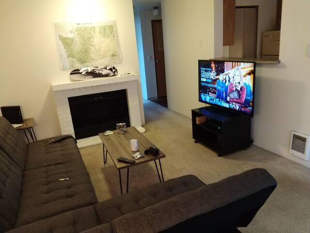 Chill apartment in Redmond