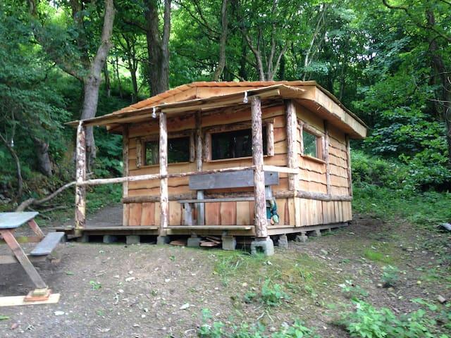 Hideaway Cabin in the Woods
