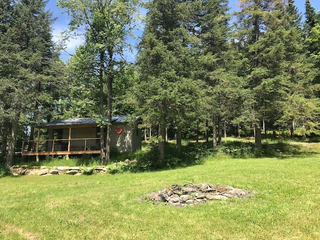 Gilligan: Cabin on a Lake w/ Hiking Trails