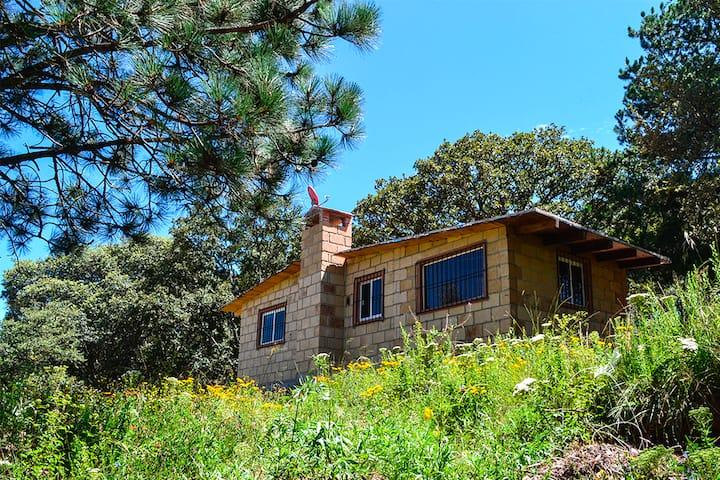 Cabaña Luciernaga   (Cabañas del Tío Tavo)