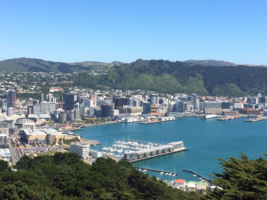Our home is one of the Piermont apartments, opposite Te Papa, the large building at the lower left of this photo. It's at the very heart of Wellington.