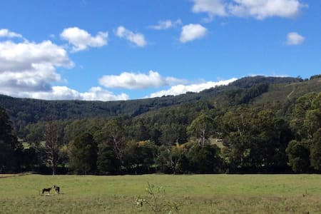 Remote country escape in lush Tasmanian valley - Gunns Plains - 其它