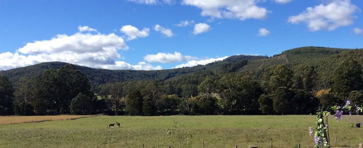 Remote country escape in lush Tasmanian valley