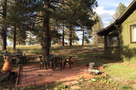 cozy cabin - Parks - Kulübe