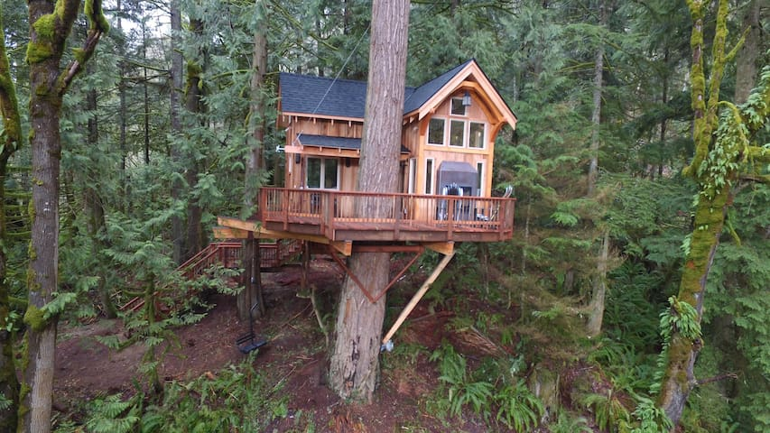 Ski house Treehouse