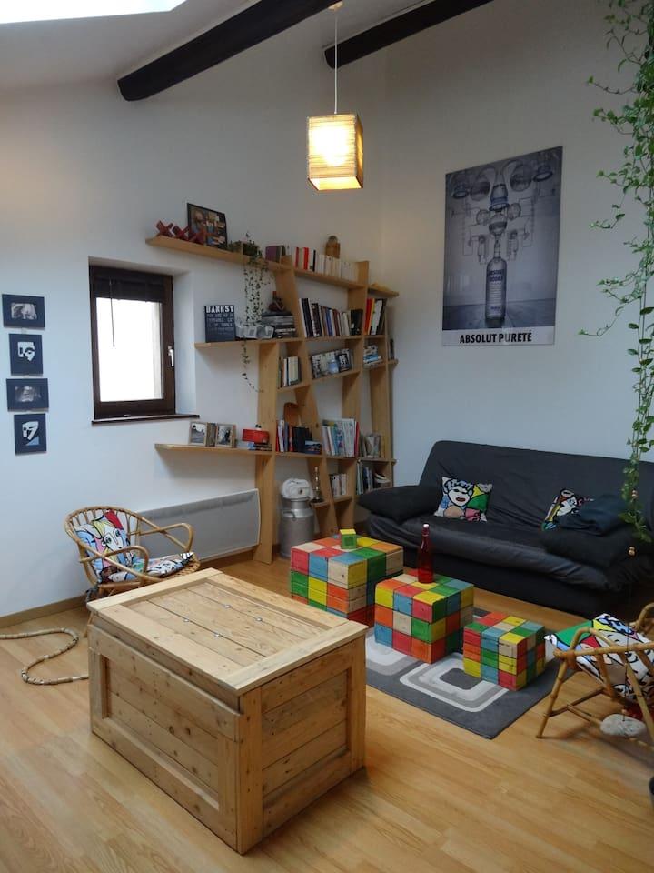 Salon tv / bibliothèque