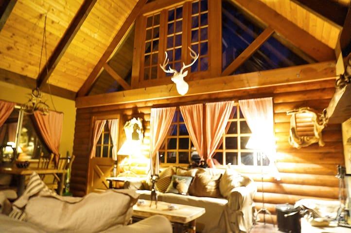 Soaring Ceilings in Living Room with log Walls