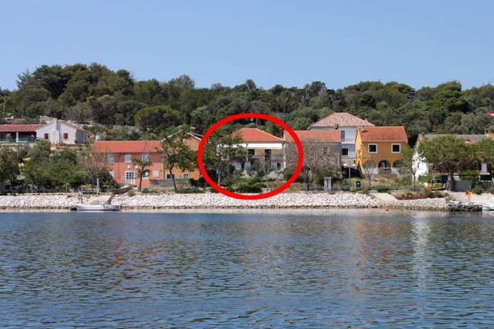 One bedroom apartment near beach Veli Rat, Dugi otok (A-437-a)