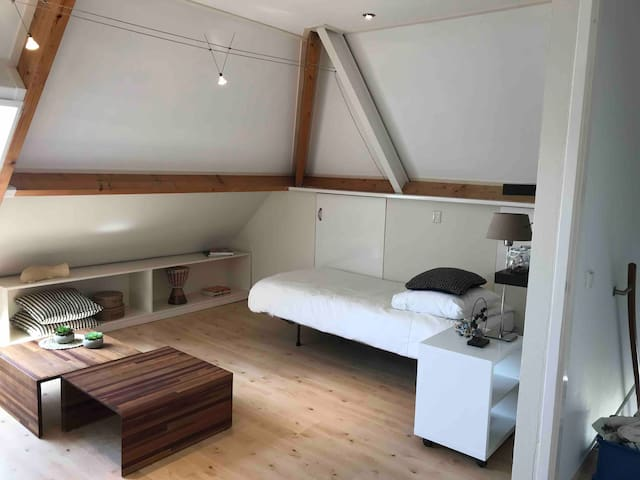 Big single bedroom in spacious house in old City.