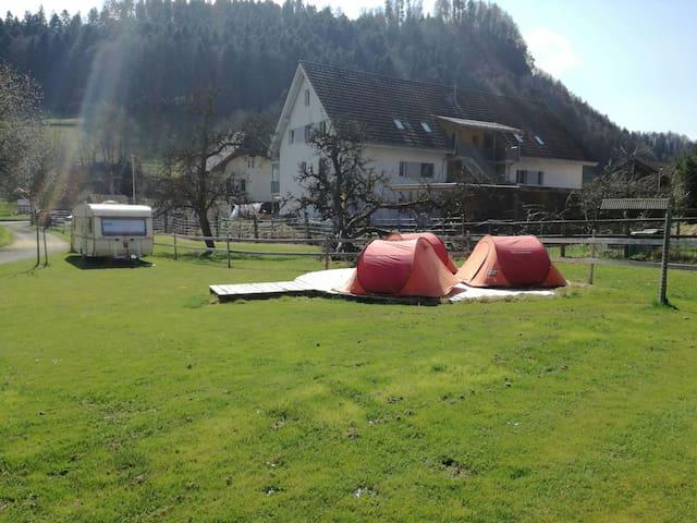 Iglu Zelt - Oberburg - Tent