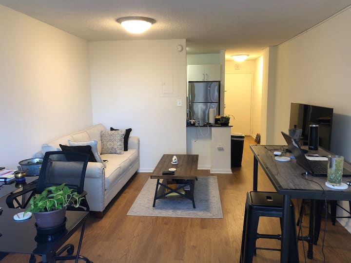 Modern Studio Apartment in Heart of DC