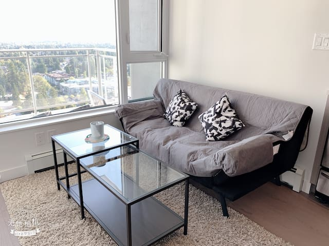 Surrey City Central-1 Bedroom+1 parking Apartment
