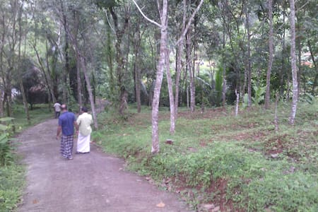 Rs. 1000 for dbl room at Chai Munnar Homestay
