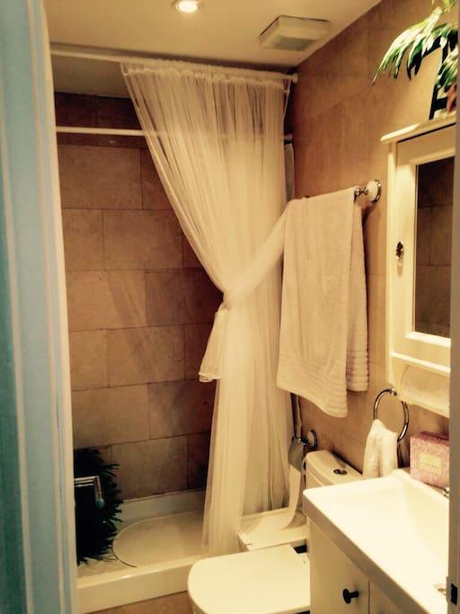 Baño con plato de ducha, y todos los servicios como toallas y secador del pelo para hacer tu estancia más cómoda.