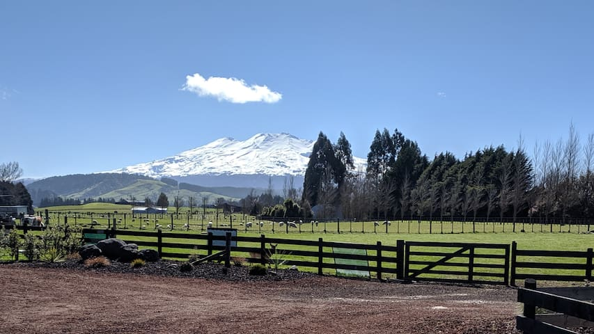 Ruapehu Mountain views lifestyle retreat.