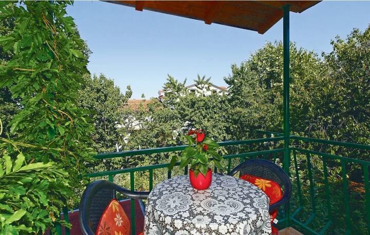 Apartments Panin / Studio with garden view