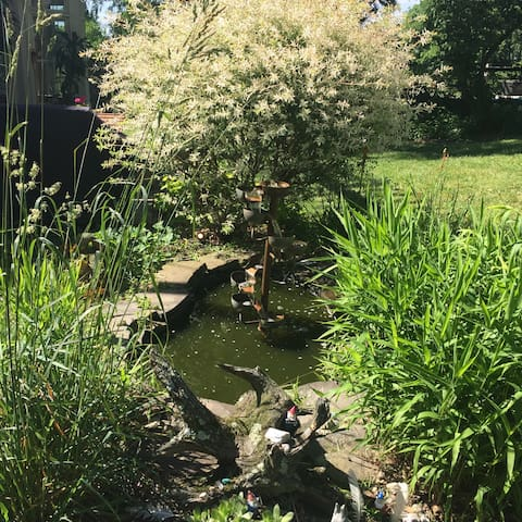 Our little pond where the gnomes live harmoniously with the frogs.