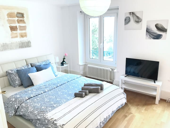 4-Magnificent apartment in Lausanne center wifi