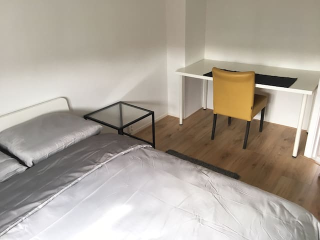 Cozy and newly renovated  apartment near HS
