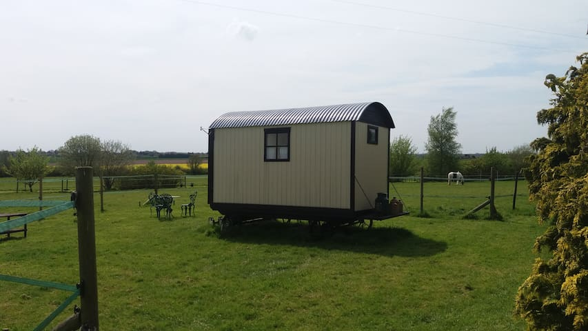 Secluded Traditional Shepherds Hut - Wereham - กระท่อม