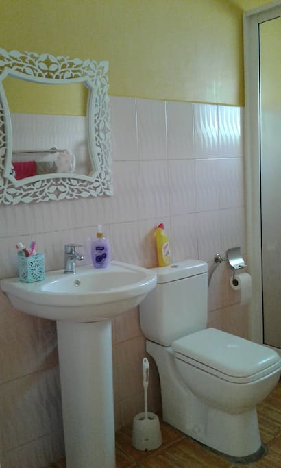This is the master ensuite bathroom and shower with modern facilities and clean running water harvested from rain.