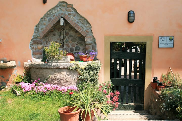 The pleasure of the countryside!!! - Castelnuovo del Garda - Bed & Breakfast