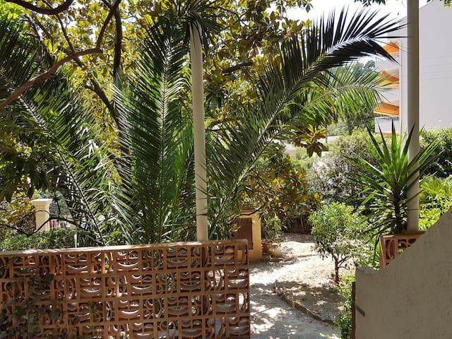 Joli T2 jardin exotique terrasse parking wifi TV