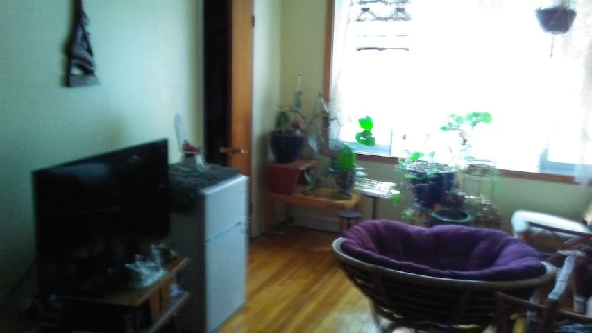 Nice spacious apt. in Montreal near river.