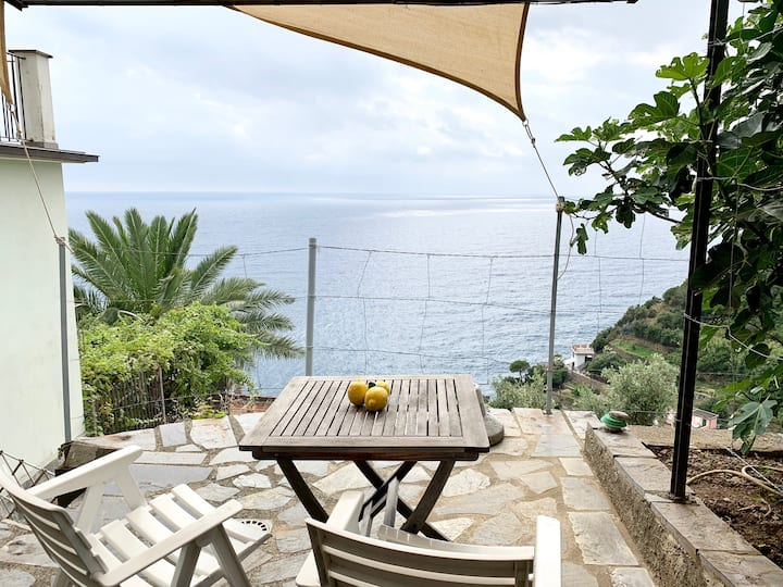 I Limoni di Thule:  Sea Views + Garden Terrace