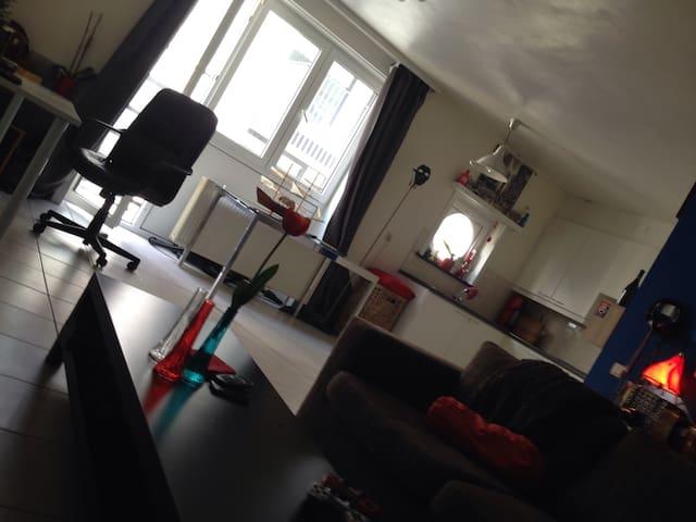 Big quiet flat city centre Gent - Gent - Apartamento