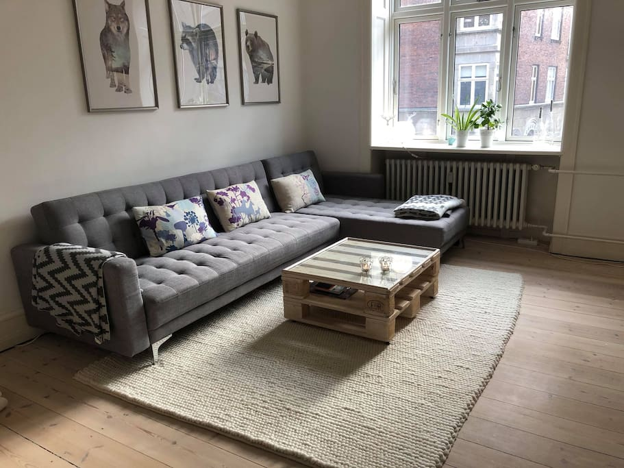 The livingroom with bed-sofa for 2