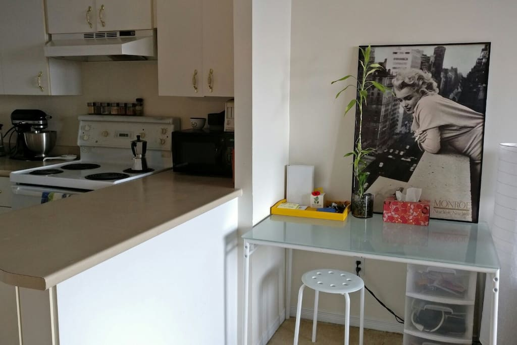 Amazing View 1 Bedroom Heart Of Ottawa Apartments For Rent In Ottawa Ontario Canada
