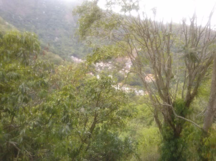 Vista para a floresta da Tijuca