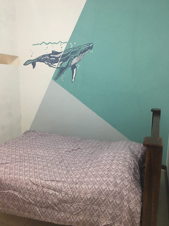 Casa Arrecife Apartamento Ballena