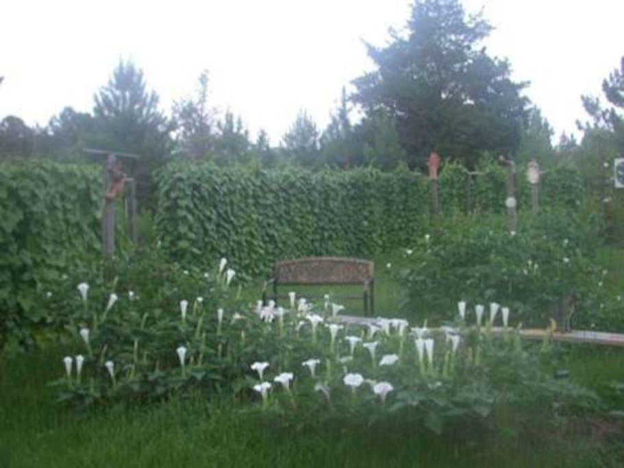 an example of a garden at Allen Acres