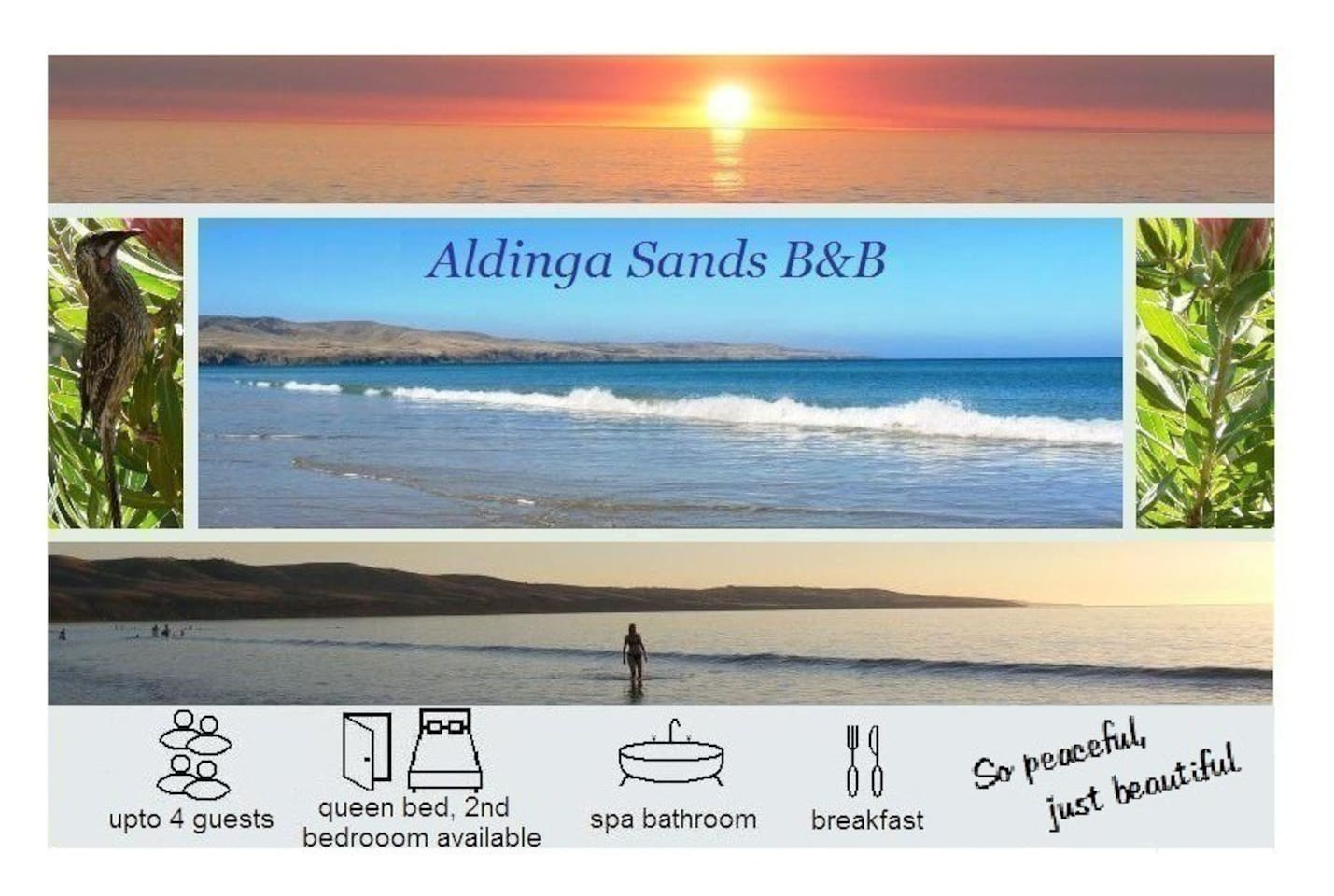 We are just a 3 minute board-walk to the beautiful Silver Sands Beach