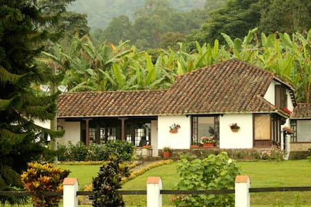 Coffee Farm, surrounded by nature! - Ház