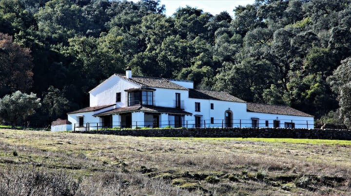 El Búho Real, Hacienda Escutia, Vía Verde Sevilla