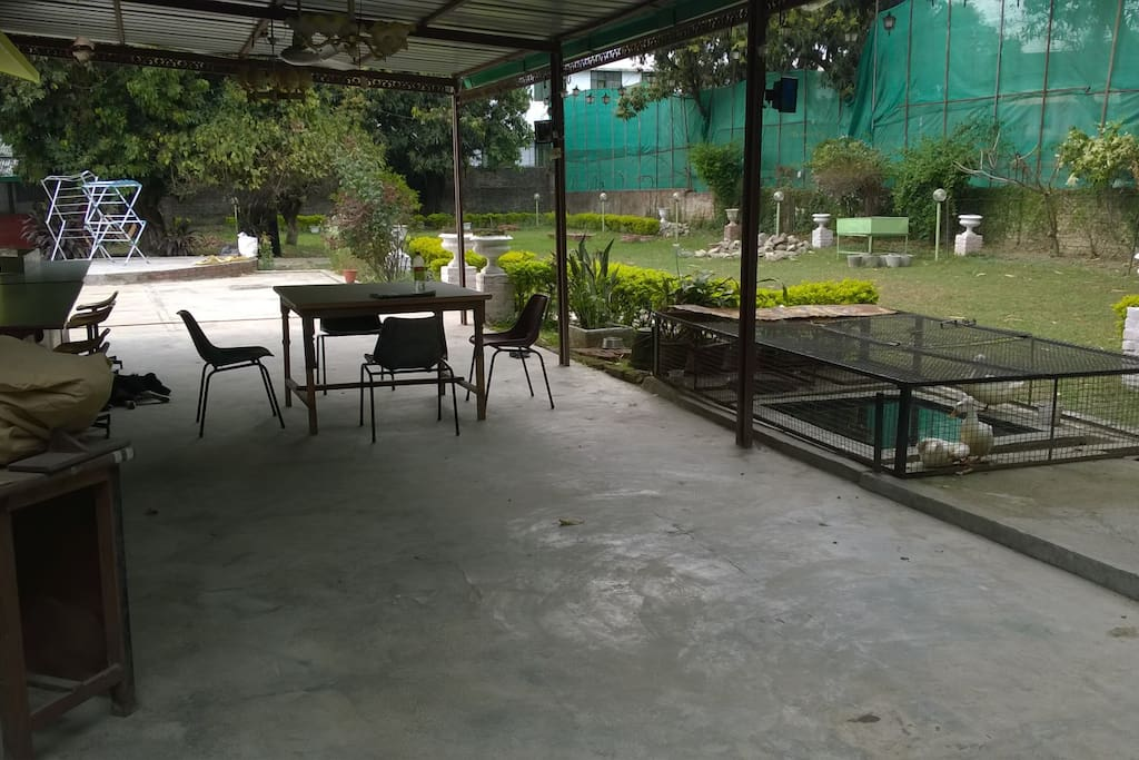 PARTY AREA, DUCK POOL, LAWN, KARAOKE AND DISCUSSIONS AREA ON THE LEFT BACK GROUND