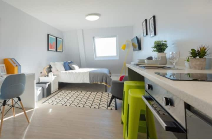 Student Only Property: Majestic Silver + Studio