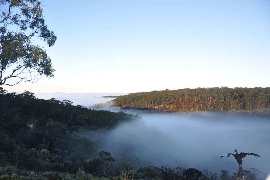 misty mountain mornings