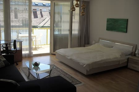 Full service 1.5-room apartment - Vienne