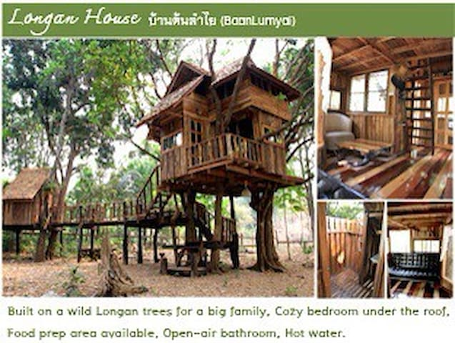 Longan Family Treehouse