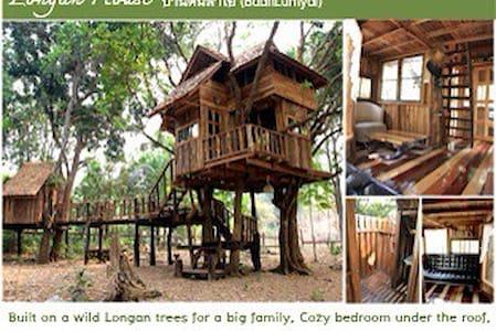 Longan Family Treehouse