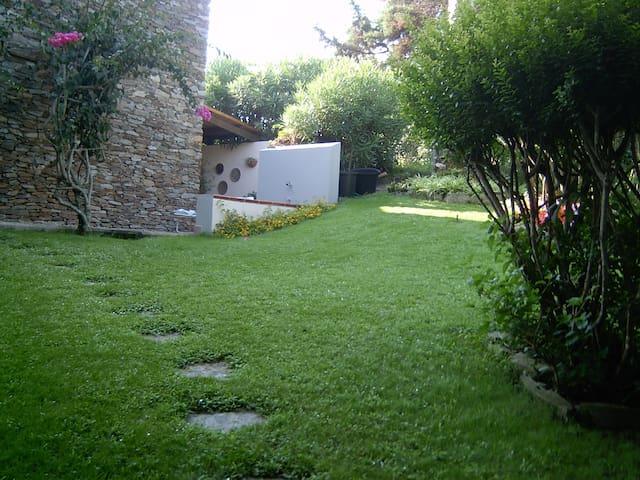 villa in the green